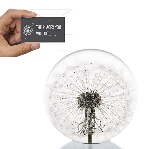 Dandelion Paperweight with Free Card - Made from a real dandelion for graduation gift with free