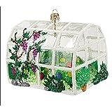 Amazoncom Kurt Adler Noble Gems 325 Greenhouse Ornament Home