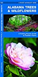 Alabama Trees & Wildflowers: A Folding Pocket Guide to Familiar Plants (Wildlife and Nature Identification)