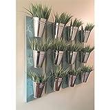 Indoor Wall Planter- Blue