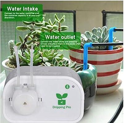 Sistema de riego automático para contenedores- Direct USB Charging Temporización Inteligente Riego automático DIY Kit de riego por Goteo para Plantas de Interior, Operación de alimentación Vacaciones: Amazon.es: Jardín