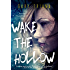 Wake the Hollow