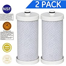 (2 PACK)Golden Icepure Water Filter Compatible with Frigidaire WF1CB,WFCB,RF-100; RG-100; RC-200; RF-200; NGRG-100; NGRG-2000,KENMORE 46 9906; 46-9906; 9906