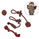 EXPAWLORER Dog Rope Chew Toys Set 5 Pcs/pack Best Xmas Tough Interaction Dog Toy Small to Large Dogs Pets Playing Dental Teaser