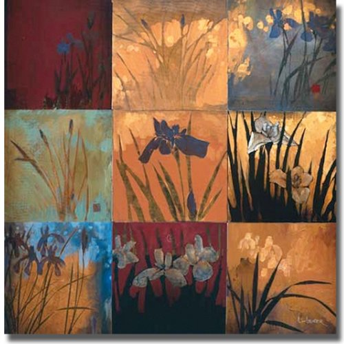 - Iris Nine Patch II by Don Li-Leger Premium Stretched Canvas (Ready to Hang)
