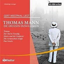 Die großen Erzählungen Hörbuch von Thomas Mann Gesprochen von: Gert Westphal
