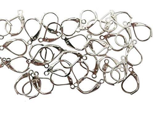 VNDEFUL 50 Pcs Stainless Steel Lever Back Hoop Earrings Earwire Findings, Silver 10x15mm
