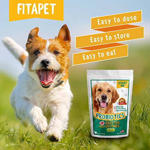 50 Off Fitapet Dog Probiotics Chewable For Dogs With Sensitive