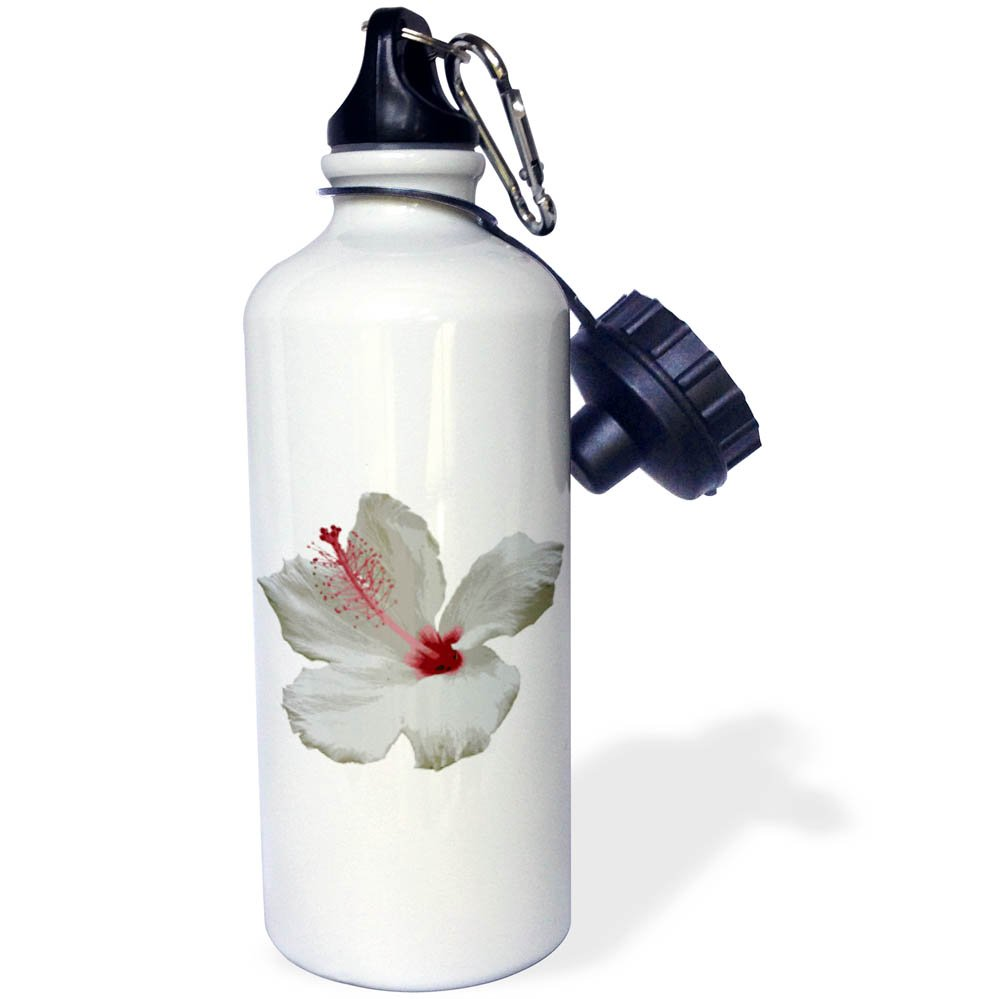 3dRose Taiche - Photography - Hibiscus - Pure White Hibiscus Tropical Flower - 21 oz Sports Water Bottle (wb_273642_1)