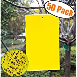 50 Count Dual Yellow Sticky Traps 5 X 3 Inch Set for Flying Plant Insect Like Fungus Gnats, Aphids, Whiteflies, Leafminers -Included 50pcs Twist Ties