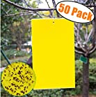 50 Count Dual Yellow Sticky Traps 5 X 3 Inch Set For Flying