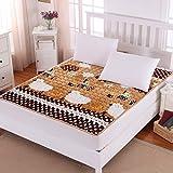 DHWJ Tatami Mattress,Laying Down Students ' mattresses,Twin Pads-B 120x200cm(47x79inch)