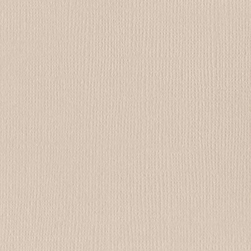 Bazzill TWIG 12x12 Textured Cardstock | 80 lb Sepia Tan Scrapbook Paper | Premium Card Making and Paper Crafting Supplies | 25 Sheets per Pack (Bazzill Paper Cardstock)