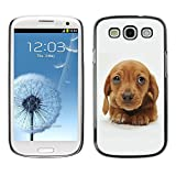 LASTONE PHONE CASE / Slim Protector Hard Shell Cover Case for Samsung Galaxy S3 I9300 / Golden Retriever Puppy Brown Cute