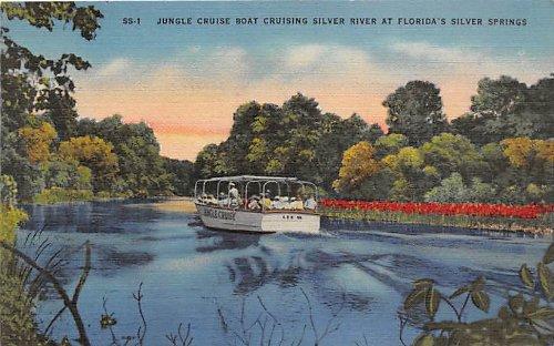 (Silver Springs, Florida Postcard)