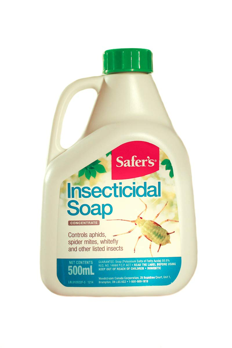 Safer's Insecticidal Soap Concentrate 500ml product image