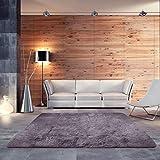 BlueSnail Super Ultra Soft Modern Shag Area Rugs, Bedroom Livingroom Sittingroom Floor Rug Carpet Blanket for Children Play Home Decorate (4' x 5.3', Rectangle, Grayish Purple)