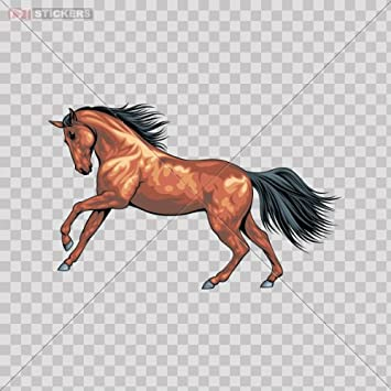 Amazon.com: Decal Stickers Horse Galloping Color Print (9 X 5.7 Inch ...