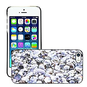 Print Motif Coque de protection Case Cover // M00156035 Textura conchas marinas Pila Naturaleza // Apple iPhone 5 5S 5G