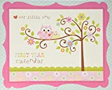 C.R. Gibson Baby's First Year Calendar, By Dena Designs, Stickers Provided, Measures 11 x 18'' - Happi Baby Girl