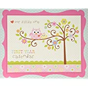 C.R. Gibson Baby's First Year Calendar, By Dena Designs, Stickers Provided, Measures 11 x 18  - Happi Baby Girl