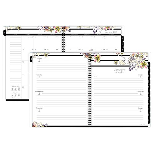 AT-A-GLANCE Weekly / Monthly Planner / Appointment Book 2017, 8-1/2 x 11