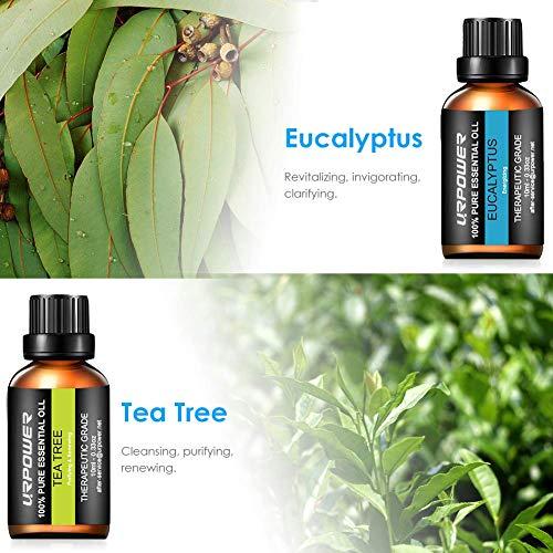 URPOWER Essential Oils, Upgraded 6 Aromatherapy Essential Oil Diffuser Essential Oils 100% Pure Lavender, Peppermint, Sweet Orange, Eucalyptus, Tea Tree, Lemongrass Essential Oil Gift Set 10ml/each
