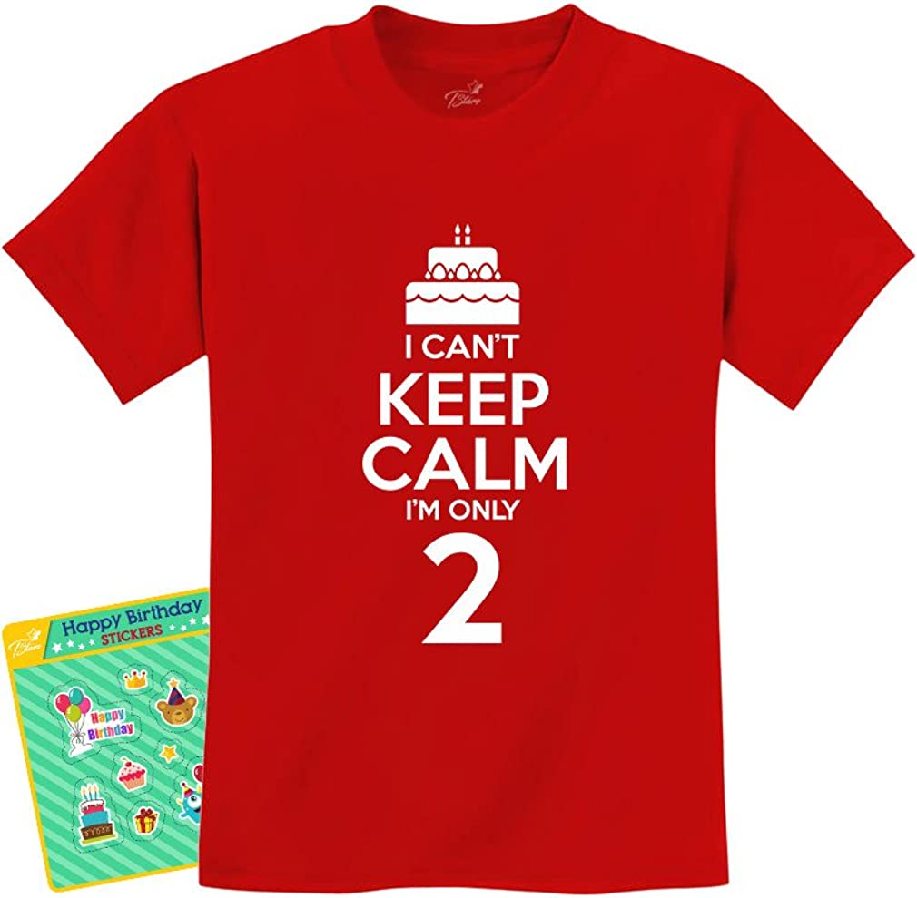2nd Birthday Cake I Cant Keep Calm Im Two Boy Girl Funny Kids T-Shirt