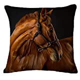 Hmlai Pillow Case Cover, Decorative Pillowcases Creative Pillow Fashion Horse Printing Home Decor Cotton Linen Cushion,Cotton Linen,45cmx45cm (D)