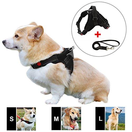 Dog Plastic Harness - DOGJOG Dog Vest Harness 3M Reflective Yarn Walking Chest Straps Plastic Adjustable Buckles Pet Vest With Handle And Leash (Small, Black)