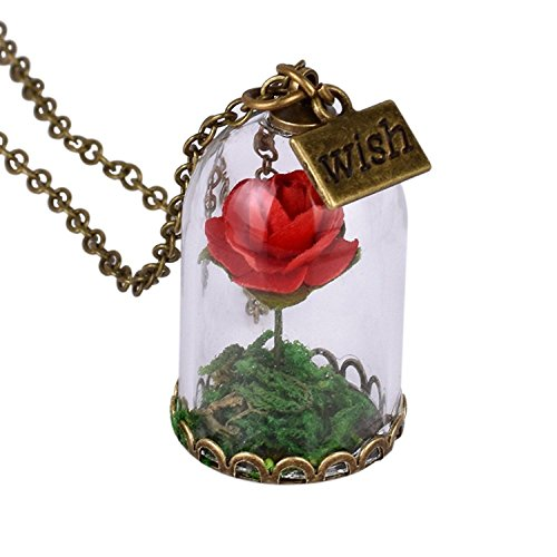 Womens Handmade Cylinder Glass Dome Floral Flower Rose Necklace Wish Charm with Gift Bag (Red)