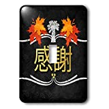 3dRose Doreen Erhardt Autumn Collection - Harvest Fall Colors and Chalk with Japanese Characters for Gratitude - Light Switch Covers - single toggle switch (lsp_290928_1)