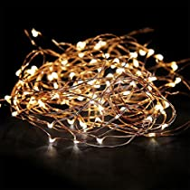 EShing 33ft 100 LED Copper Wire Fairy String Lights with UL Power Adapter for Wall, Garden, Lawn, Patio, Wedding, Party, Indoor, Outdoor Decorations (Copper Wire-Multicolor)