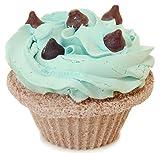 Fizzy Baker Mint Chocolate Chip Cupcake Bath Bomb