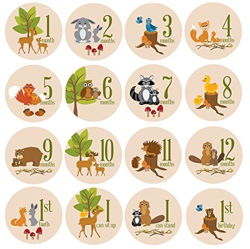 baby-milestone-stickers-by-zelda-matilda-gorgeous-woodland-critters-monthly-growth-bodysuit-stickers
