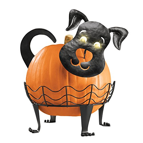 Collections Etc Decorative Dog Pumpkin Holder with Light-up Eyes, Black