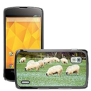 Print Motif Coque de protection Case Cover // M00126760 Ovejas Granja Agricultura Grupo // LG Nexus 4 E960