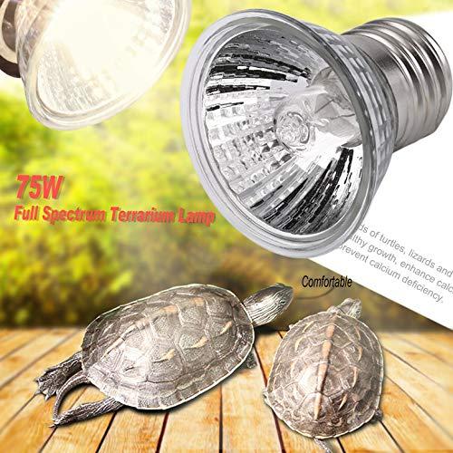 UVB 25W 75W Ampoule compacte spectre complet de lampe de terrarium spectre id/éal pour tortues reptiles amphibiens 50W