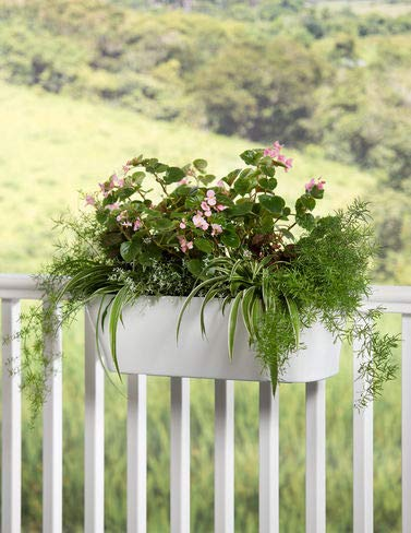 Gardener's Supply Company Viva Self-Watering Deck Railing Planter, 23-1/2