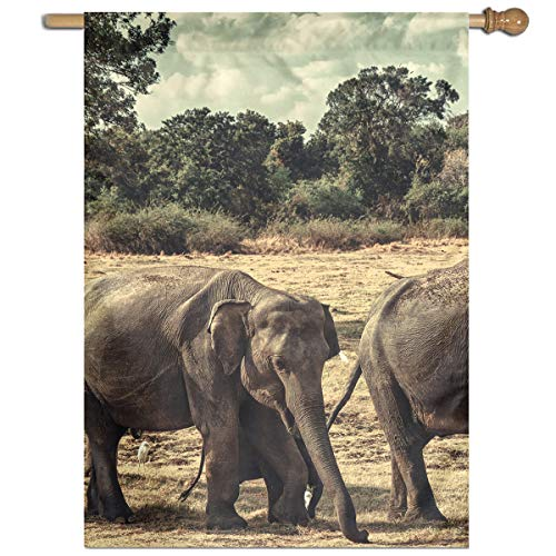 YUANSHAN Single Print Home Garden Flag Elephants Family Polyester Indoor/Outdoor Wall Banners Decorative Flag 27