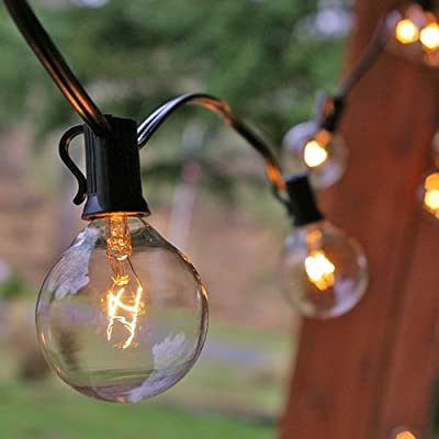 Globe String Lights, 2 in. Bulbs, 11 ft. Black Wire, Outdoor, Clear