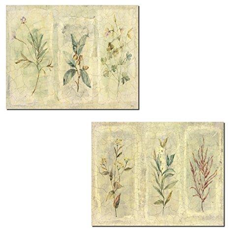 Beautiful Vintage Botanical Flower Prints Floral Decor Two Poster Prints