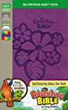 NIrV, Adventure Bible for Early Readers, Imitation Leather, Purple, Full Color