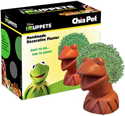 Chia Pet maceta, Kermit la rana: Amazon.es: Jardín