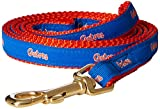 NCAA Florida Gators Dog Leash, Small