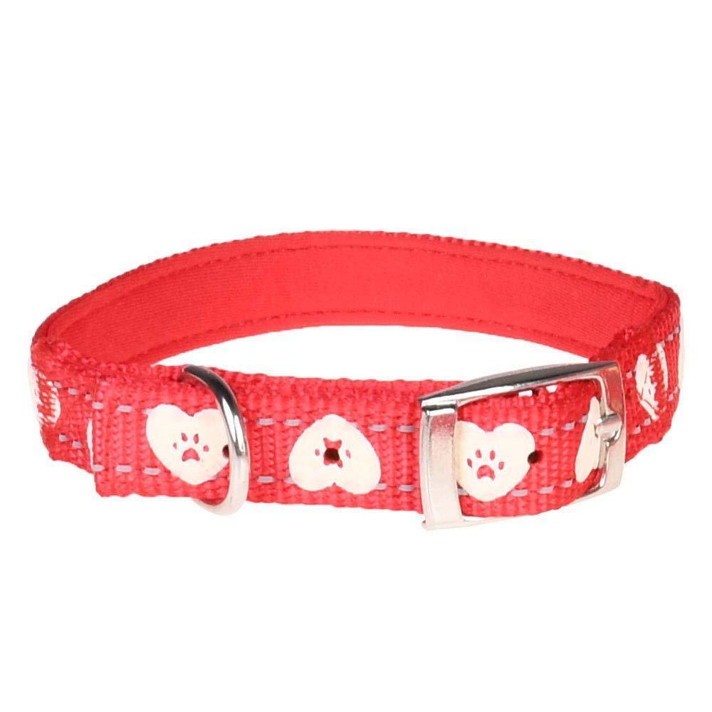 prodotti creativi Daeou Collari per cani Manica di nylon collare riflettente riflettente riflettente collo fluorescente flash collare catena luminosa  prezzo più economico