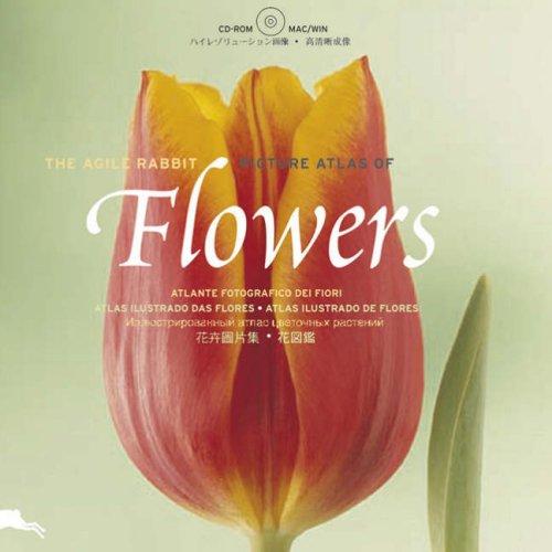 Flowers (Agile Rabbit Editions)