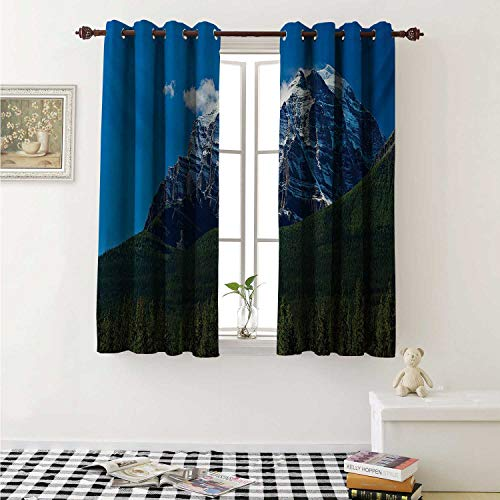 shenglv Mountain Decor Curtains by Snow Covered Mountain Peaks with Vivid Sky and Vibrant Trees National Park Curtains Girls Bedroom W63 x L63 Inch Green Blue White