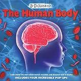 3 d close up the human body