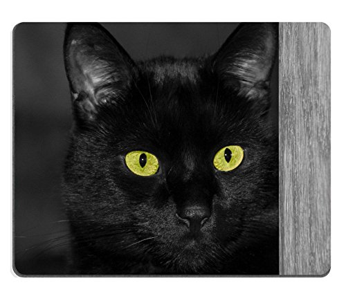 MSD Mouse Pad Natural Rubber Mousepad Image of cat Animal Mammal Feline Black Domestic pet Kitten Background Fur Kitty Nose face Cute Hair